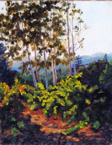 Sonoma Valley Art