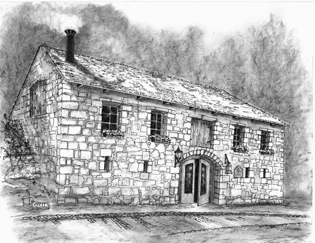 Wine Country Ink Drawings Charcoal Barbara White Perry